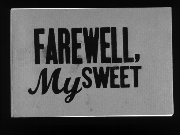 the farewell party anita desai pdf